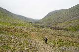 Strutsfoss_077_08112021 - Mom continuing to follow along a wide open stretch of the Villingadalur Valley as we pushed towards Strútsfoss