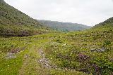 Strutsfoss_226_08112021 - Mom continuing to make her way back along Villingadalur back to the trailhead