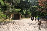 Sturtevant_Falls_028_05272019 - A small clearing at the other side of the footbridge en route to Sturtevant Falls in Memorial Day 2019. At this clearing was an outhouse as well as a trail junction for longer uphill trails leading to Mt Wilson as well as Chantry Flat via the long way