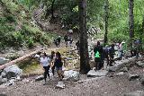 Sturtevant_Falls_054_05272019 - Looking back at another creek crossing where lots of people struggled to get across while keeping their shoes dry