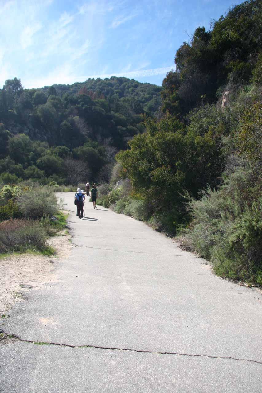 The hot paved road at that we now had to ascend at the end of the hike