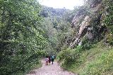 Sturtevant_Falls_114_05272019 - The crew returning along the Sturtevant Falls Trail at the foot of the Big Santa Anita Canyon walls during our Memorial Day 2019 visit