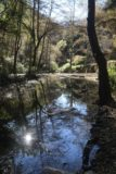 Sturtevant_Falls_15_017_01182015 - Looking over a calm and reflective part of the creek along the Sturtevant Falls Trail during our January 2015 visit