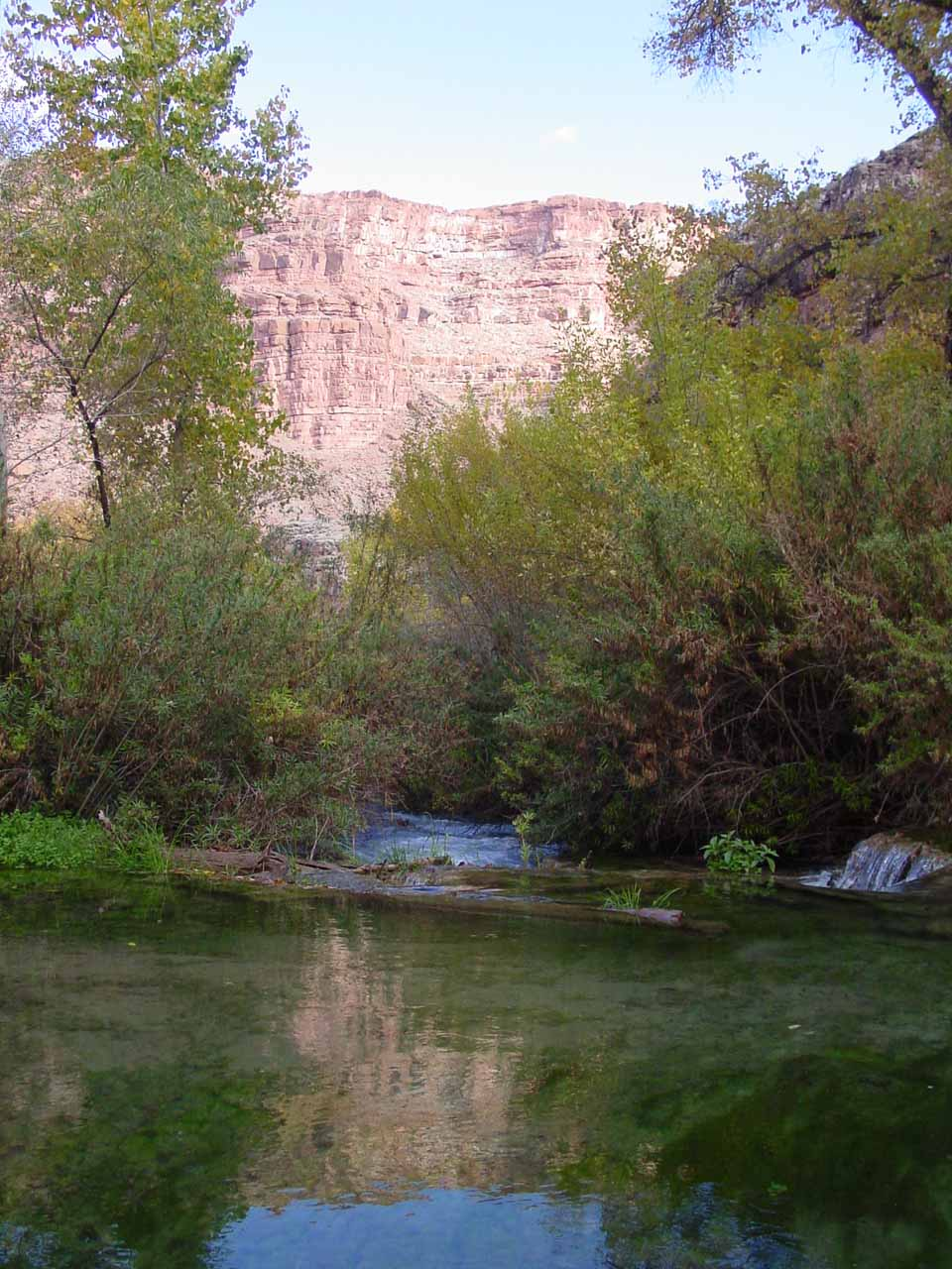 Reflections in Havasu Creek in the morning