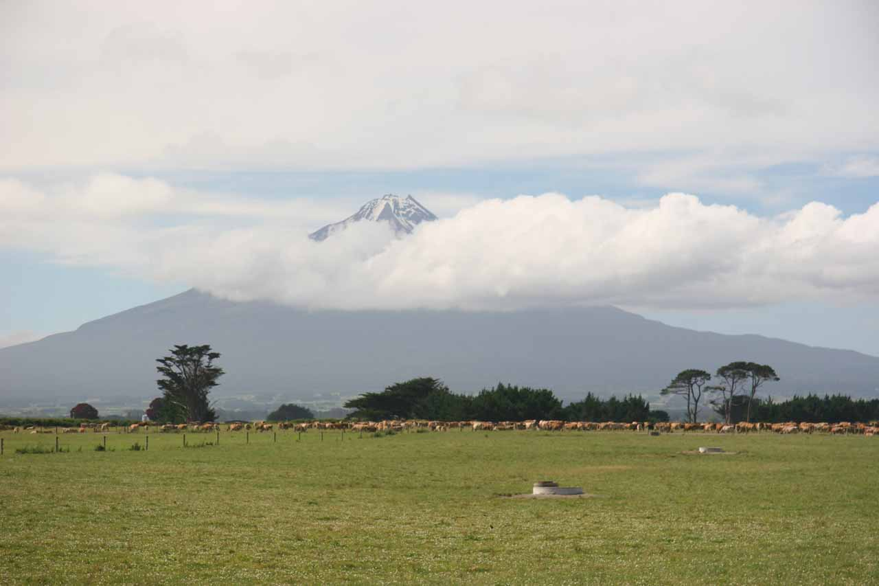 Looking through some of the low clouds hovering around the southern slopes of Mt Taranaki from the Surf Highway on a later visit in January 2010