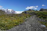 Svinafellsjokull_003_08082021 - Mom getting started on the short hike up to the Svinafellsjokull