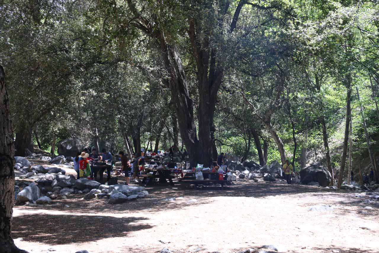 It was pretty busy at the Switzer Falls Picnic Area, which seemed to be a nice place to spend time with loved ones while being in the great outdoors