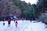 Switzer_Falls_020_12282019 - Walking along the mostly icy and snowy elongated parking lot by the trailhead for Switzer Falls at the lower picnic area