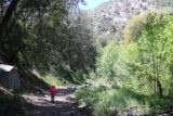 Switzer_Falls_034_04232016 - Tahia continuing with the our April 2016 hike to Switzer Falls alongside the Arroyo Seco