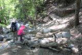 Switzer_Falls_037_04232016 - Julie and Tahia doing another creek crossing shortly after the stoves as the trail was soon about to get narrow and uphill
