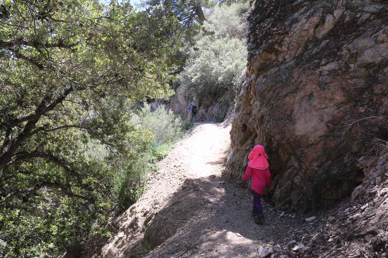 Now, the trail was narrow enough to start causing some cliff exposure, which made us more cautious about our daughter's progress