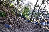 Switzer_Falls_057_12282019 - Now back within the Bear Canyon as we walked upstream along Arroyo Seco towards the Lower Switzer Falls