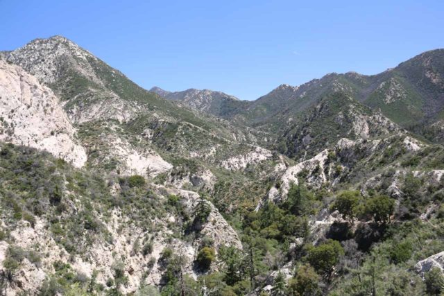 Switzer_Falls_059_04232016 - This was the gorgeous view over Bear Canyon and the San Gabriel Mountains at the crest of the Switzer Falls Trail (part of Gabrielino Trail)