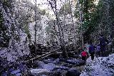 Switzer_Falls_081_12282019 - Approaching the familiar logjam fronting the secluded dead-end at the main Switzer Falls