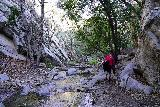 Switzer_Falls_131_12282019 - Going back downstream along Arroyo Seco from the Lower Switzer Falls