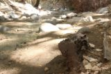 Switzer_Falls_193_04232016 - Checking out another piece of machinery left behind in the Arroyo Seco as we were hiking back from the Lower Switzer Falls in April 2016