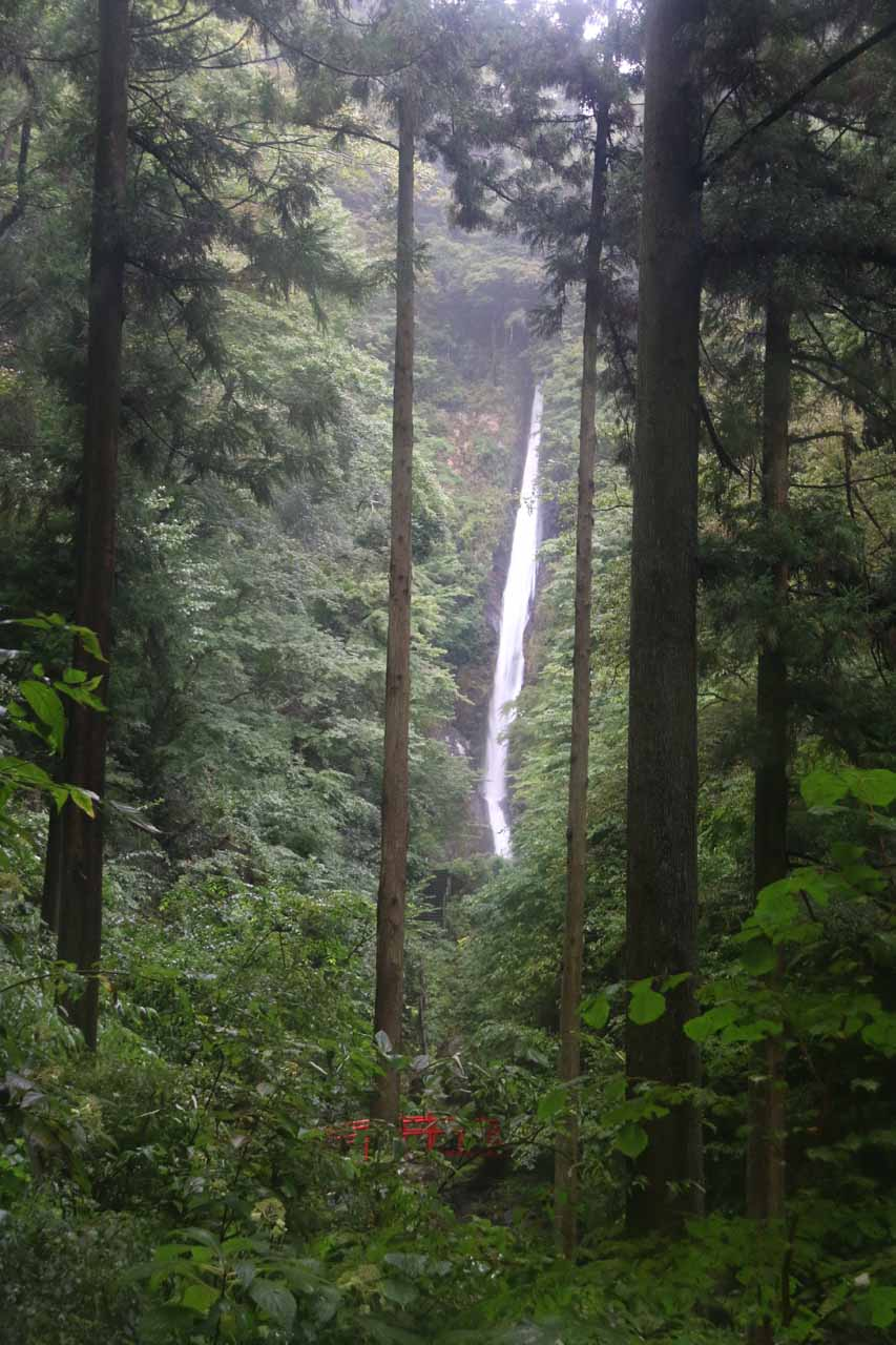 This was another view of the Syasui Waterfall framed by tall trees from the elevated photo spot