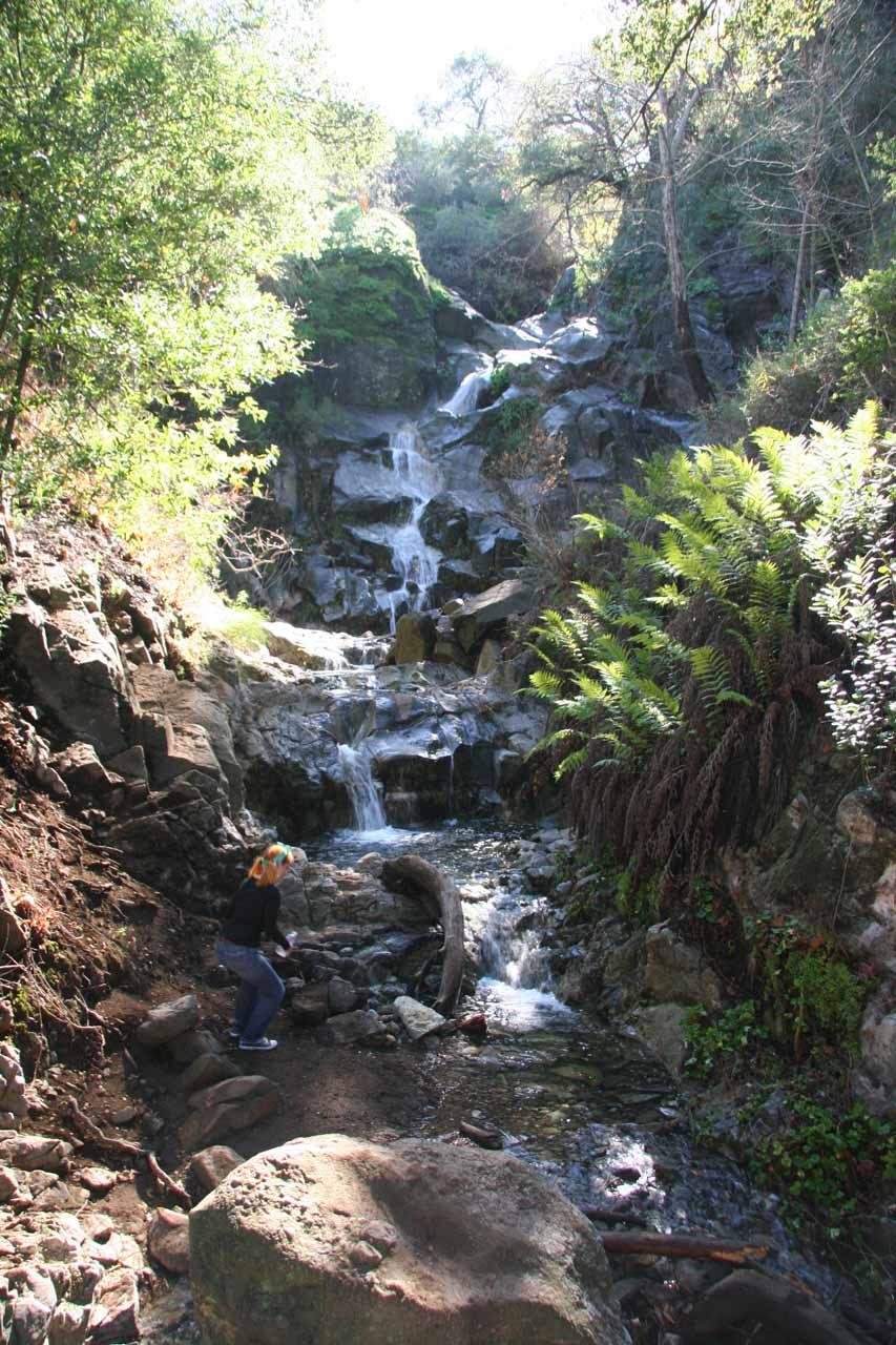Sycamore Canyon Falls