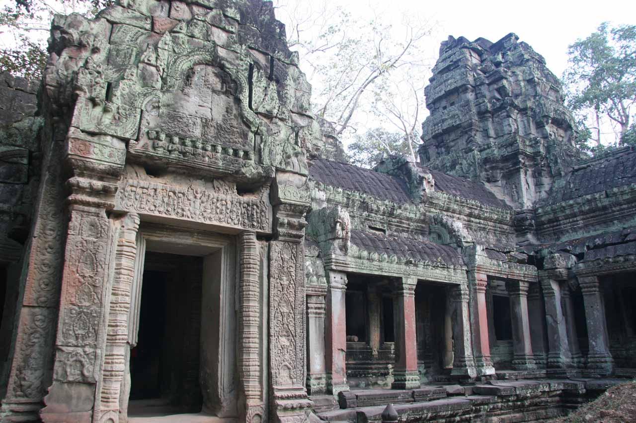 Amongst the Ta Prohm ruins