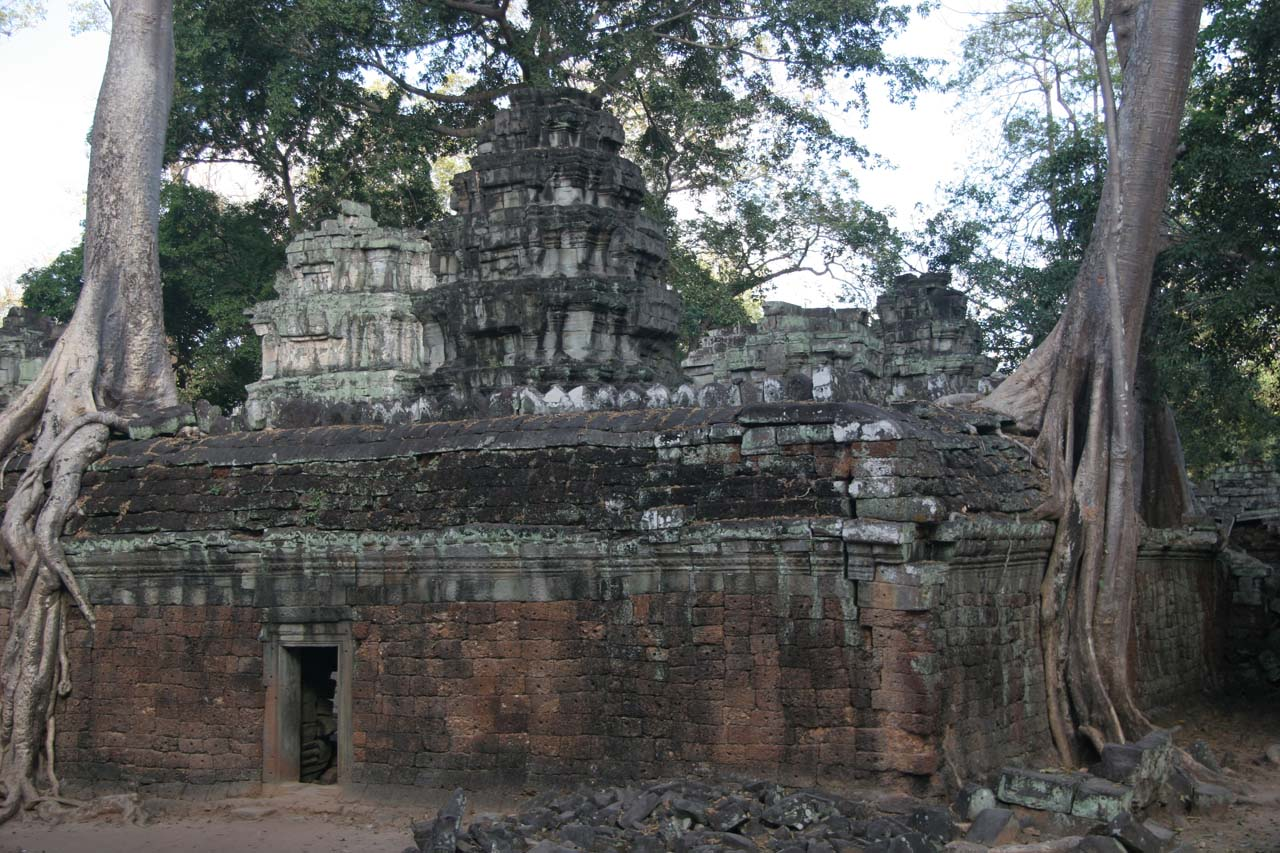 Trees growing over the ruins are what makes Ta Prohm
