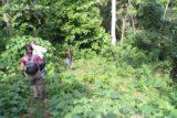 Tacky_Falls_002_12272011 - Descending towards the rough path to Tacky Falls