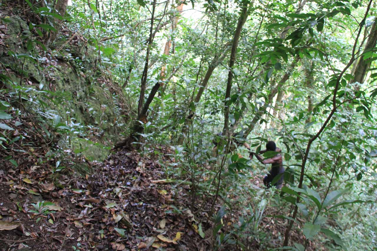 More steep and overgrown scrambling
