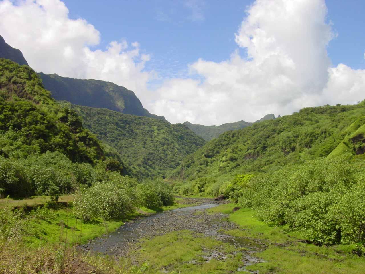 Papenoo River in low flow