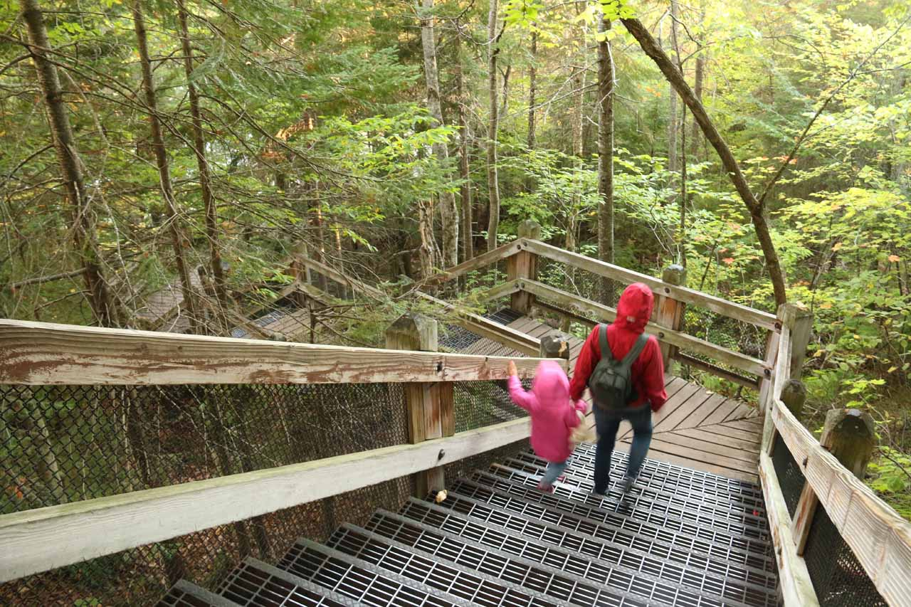 Julie and Tahia going down the 94 steps to the viewing area at the brink of the Upper Tahquamenon Falls