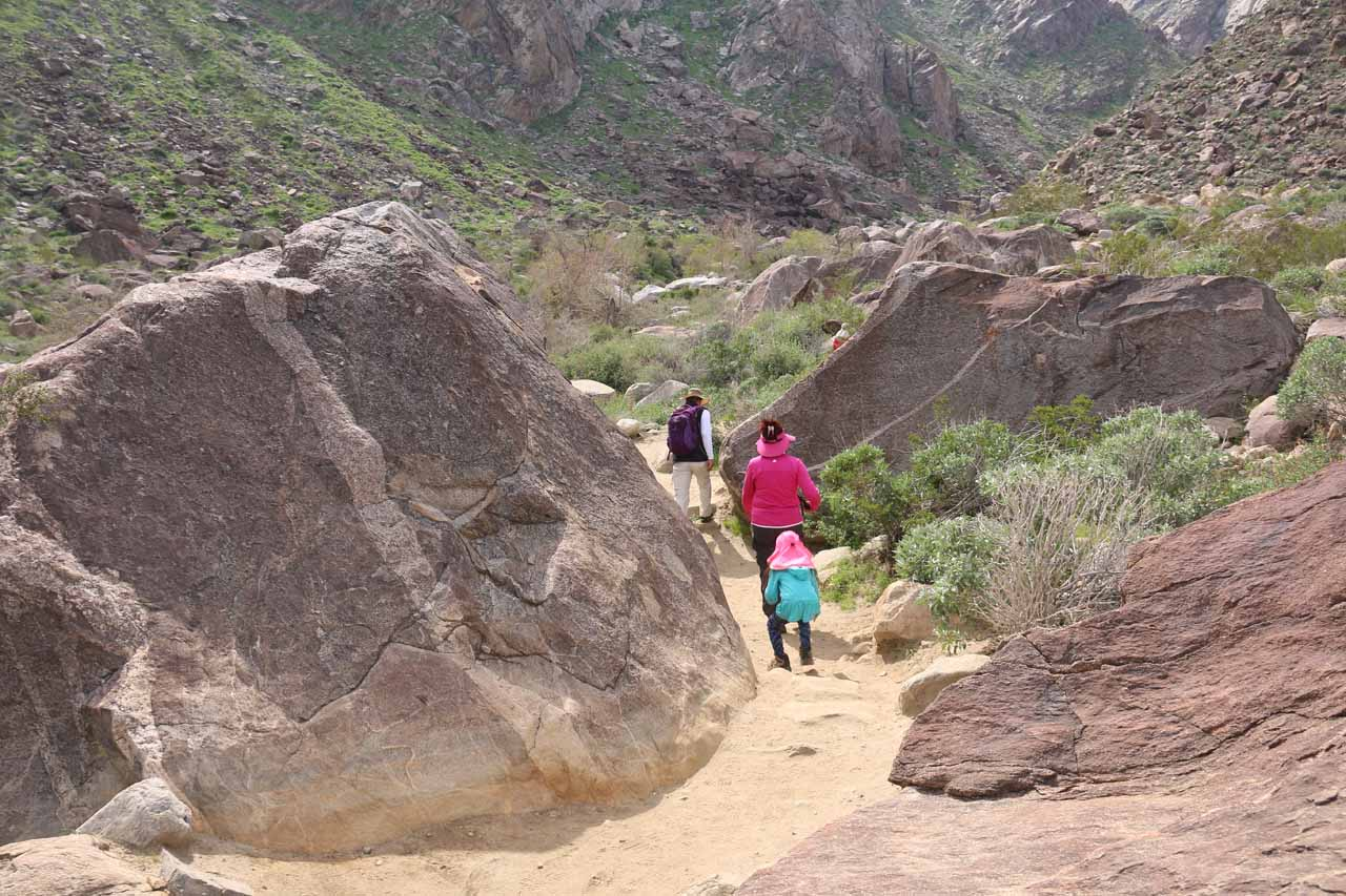 The Tahquitz Falls Trail meandered amongst giant boulder like what's shown here, which had fallen from the steep cliffs flanking Tahquitz Canyon over the years
