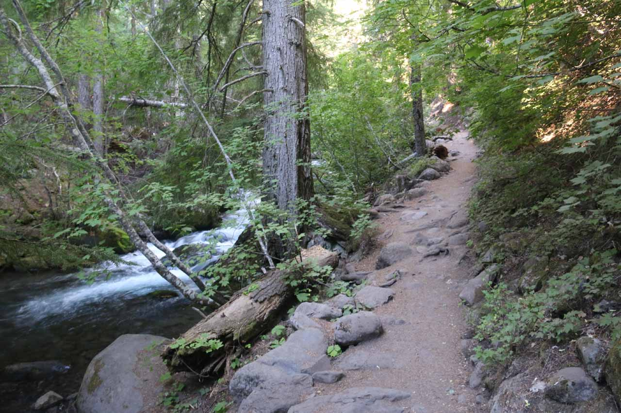 The Tamanawas Falls Trail and Cold Springs Creek