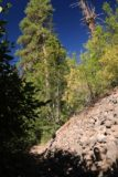 Tamanawas_Falls_053_08182017 - This was one of the rock slopes next to the Tamanawas Falls Trail, but it wasn't the major rock slide that destroyed part of the original trail