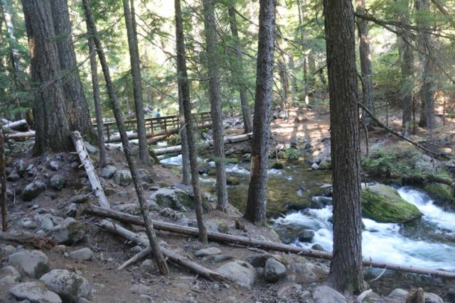Tamanawas_Falls_164_08182017 - Looking back at the footbridge over the Cold Springs Creek to continue the Tamanawas Falls Trail