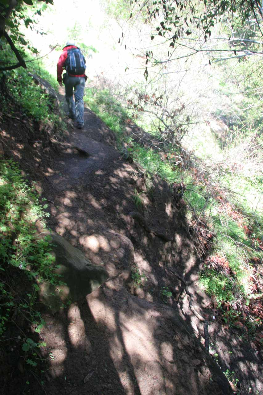 After crossing the dry creek bed, Julie was still trying to follow the trail as it got considerably narrower