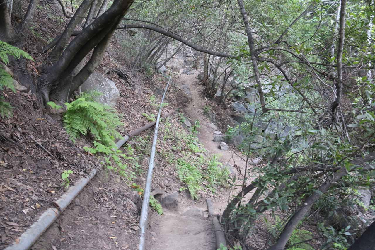 Getting back to the Tangerine Falls Trail, where I should have known to keep following the water pipes