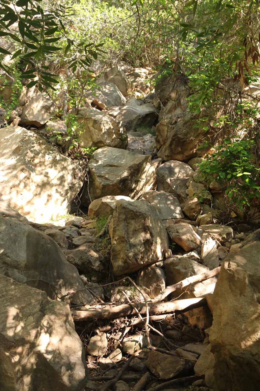 These nearly vertical jumble of boulders was what we had to climb up to get closer to Tangerine Falls