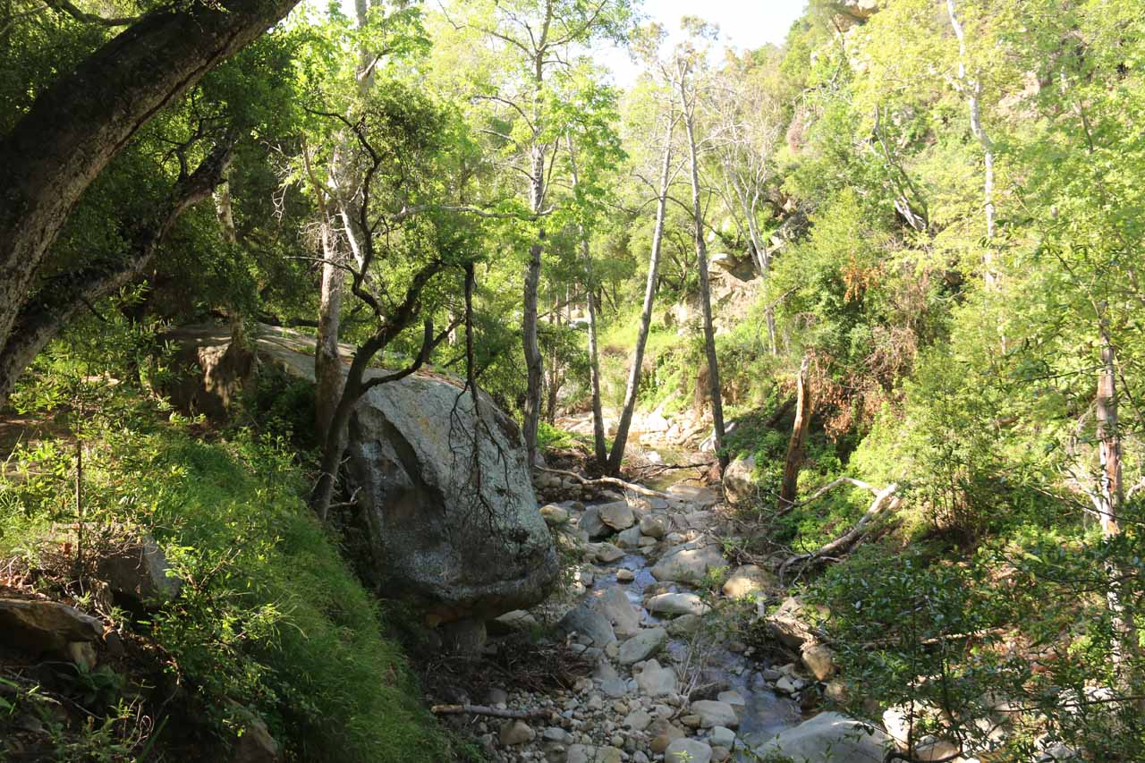 Following Cold Springs Creek as I was getting closer to the Tangerine Falls Trailhead again