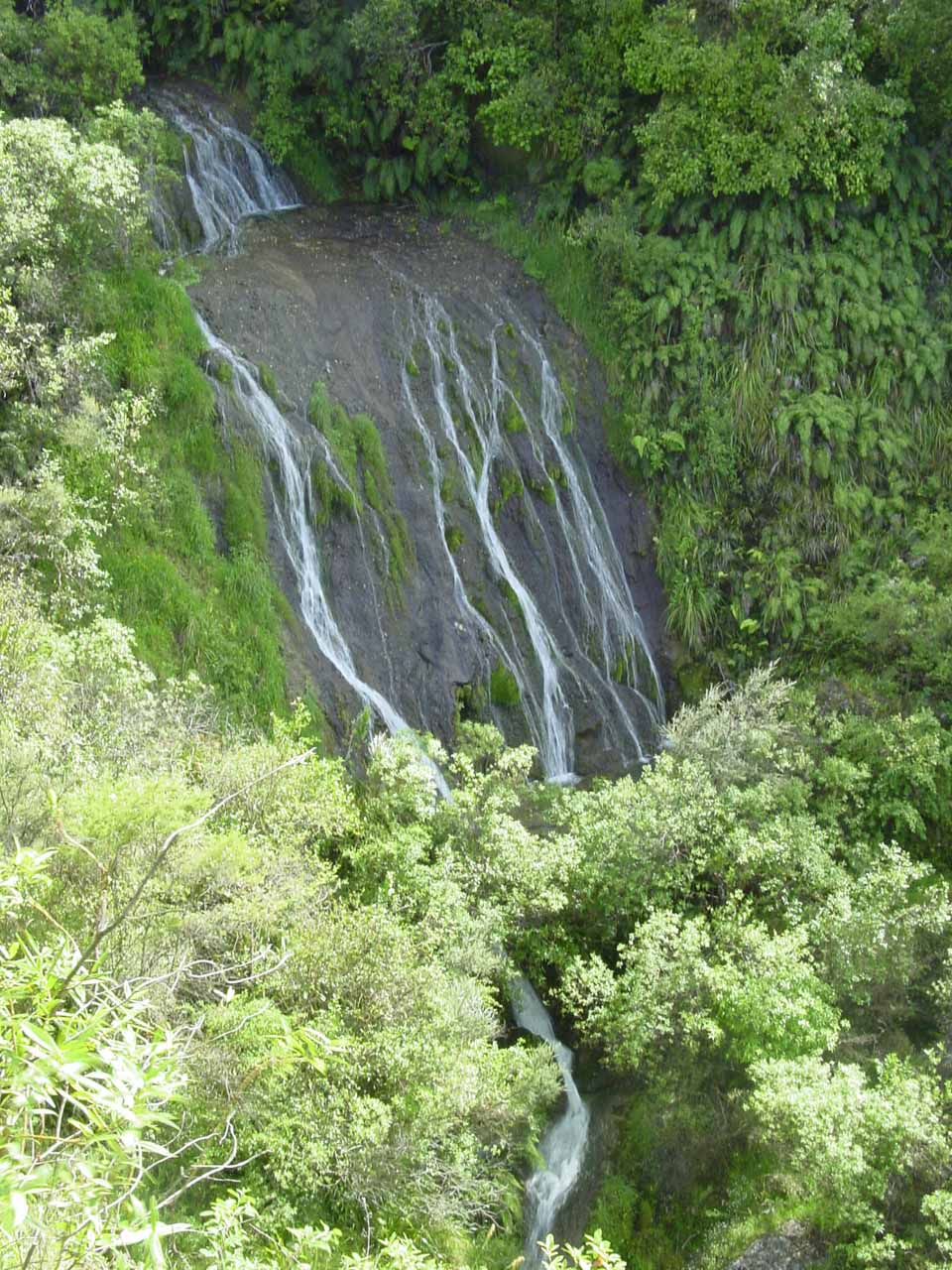 Looking down at the segmented Tangoio Falls