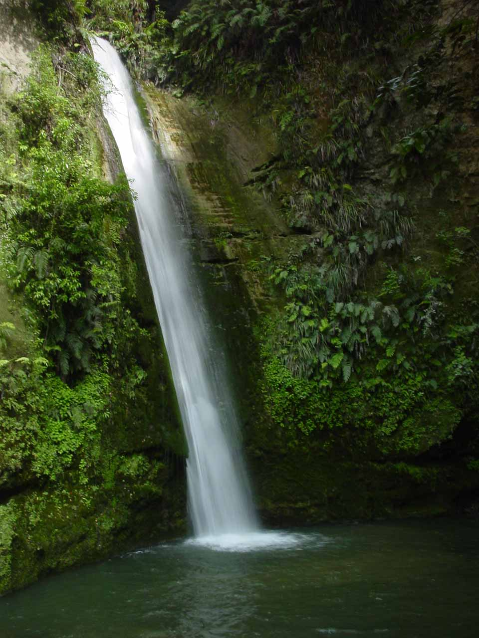 This was the attractive Te Ana Falls, which was the second of the waterfalls that we saw in the Tangoio Falls Scenic Reserve