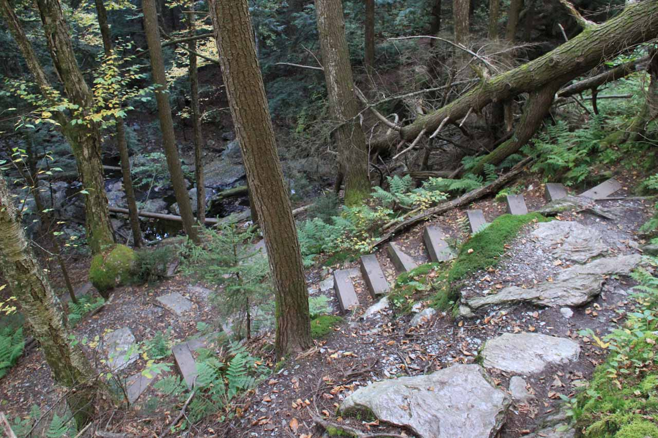 Steps helped to make the descent easier and less erosion-prone