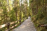 Tannforsen_074_07122019 - Taking the well-developed footpaths to reach the lower overlooks of Tännforsen