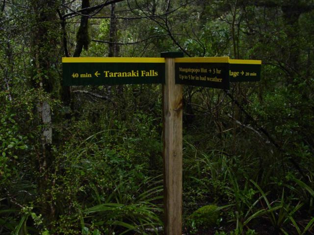 Taranaki_Falls_004_11162004 - Sign at a trail junction within a lush native forest area while walking the Taranaki Falls Loop