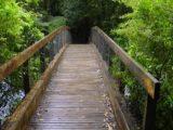 Tarawera_Falls_003_11132004