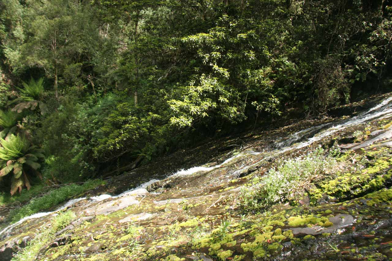 Looking down alongside the sliding Tarra Falls