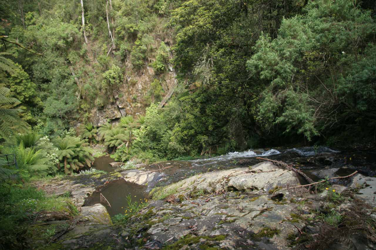 Looking down from the top of Tarra Falls