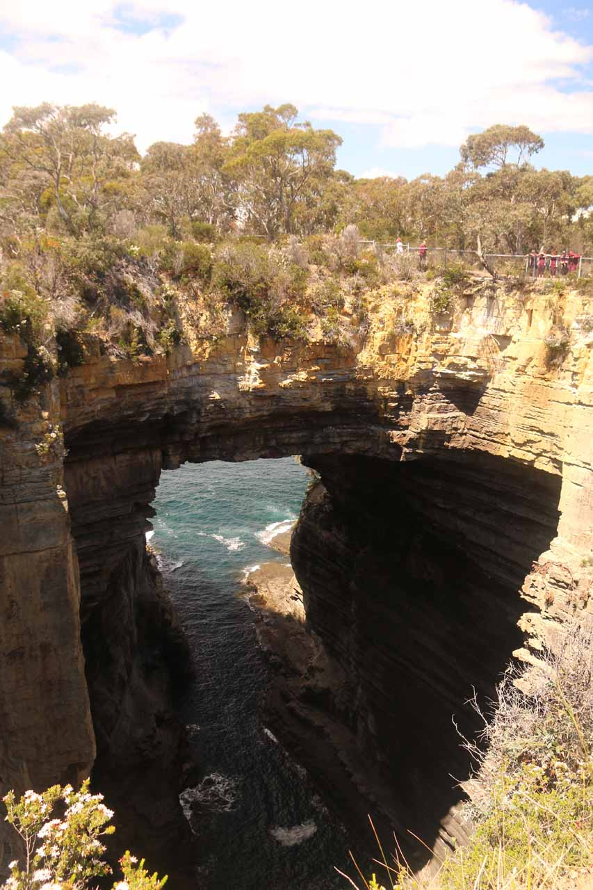 This was the roadside Tasman Arch, which was at the starting end of the coastal Waterfall Bay Track. This giant sea arch was formed from a sea cave whose roof was mostly collapsed