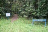 Tchupala_Falls_002_05162008 - The walking track for both Tchupala and Wallacha Falls