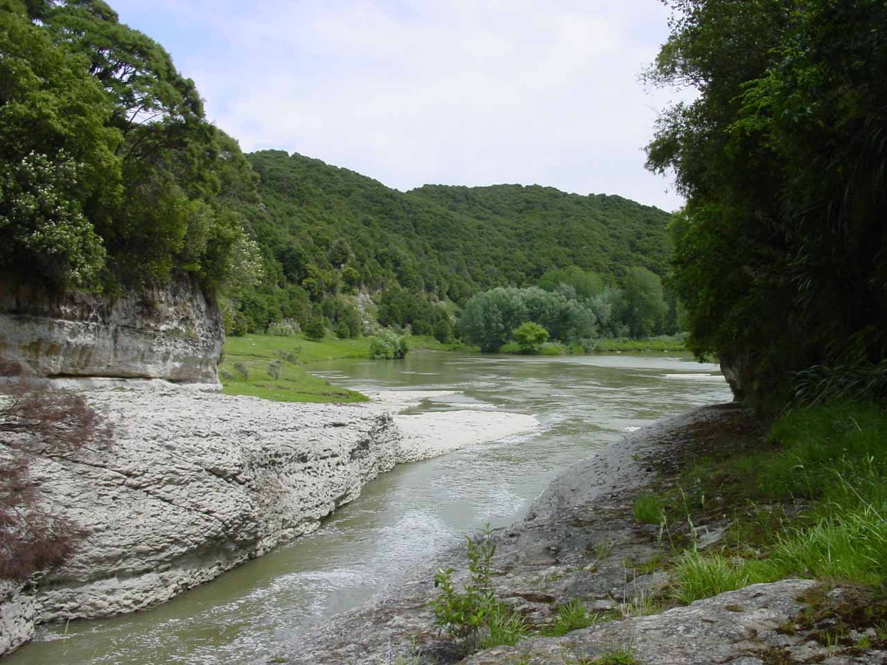 Looking downstream from Te Reinga Falls