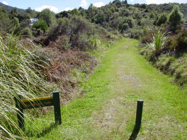 Te_Urewera_074_11142004 - The short track leading down to the Papakorito Falls