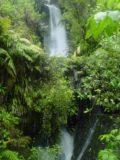 Te_Wairoa_007_11132004