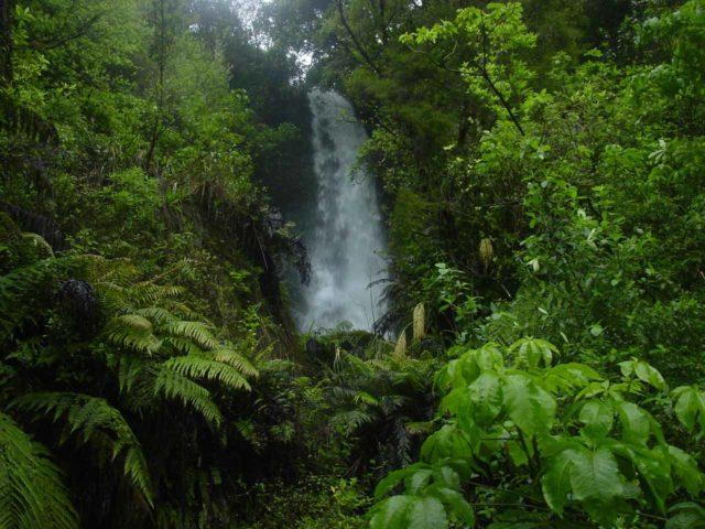 Te_Wairoa_016_11132004